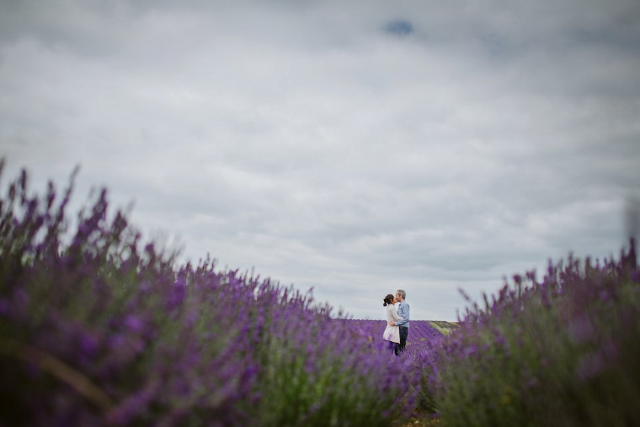 Hitchin Lavender - Kathy & Liam - Lee Dann Photography-1008