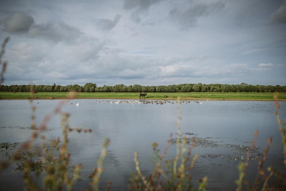 Port Meadow engagement shoot - Hannah & Christian - Lee Dann Photography - 0001